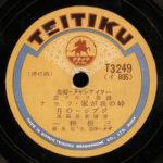 TEITIKU-3249